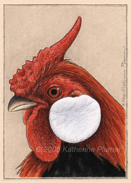 Rosecomb Chicken Rooster Art Drawing